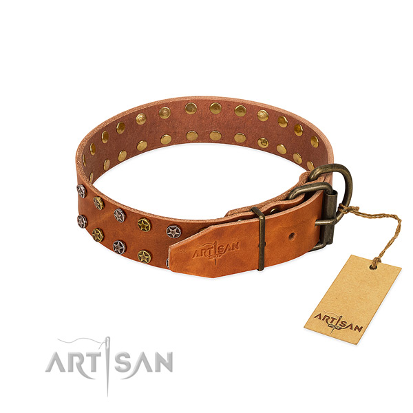 Daily walking natural leather dog collar with unique embellishments