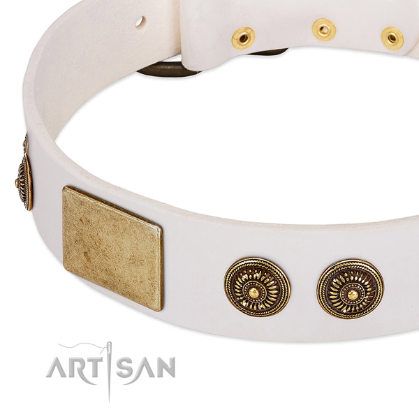 Inimitable dog collar created for your stylish doggie
