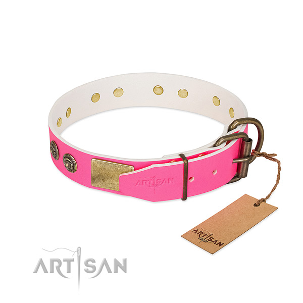 Rust-proof hardware on full grain leather collar for fancy walking your canine