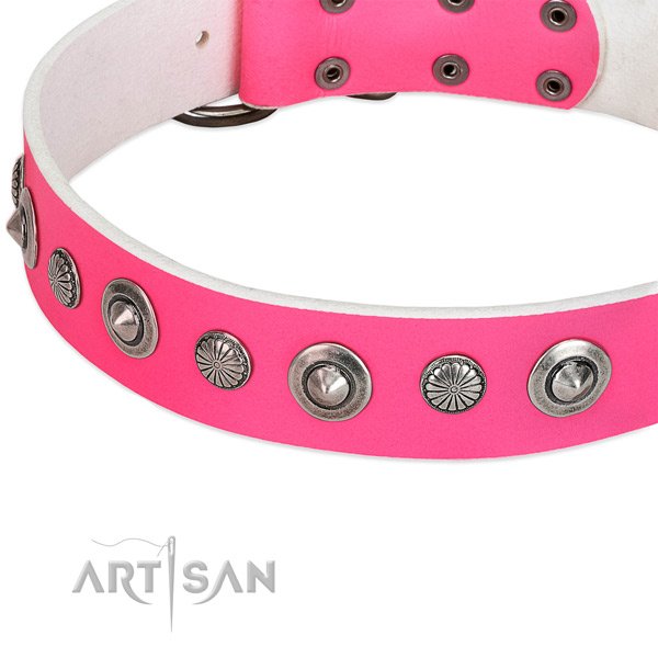 Full grain genuine leather collar with reliable buckle for your attractive dog