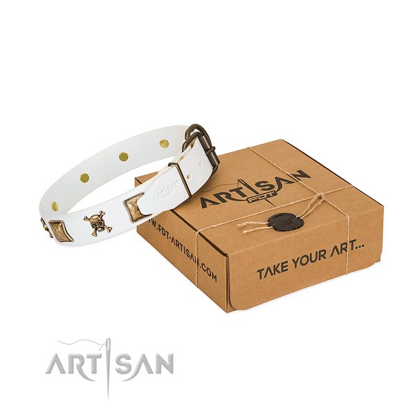 Top notch full grain leather dog collar with reliable embellishments