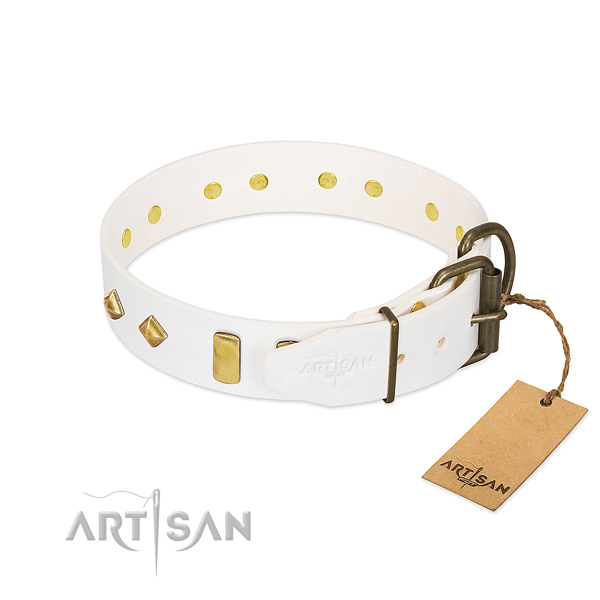 Gentle to touch full grain genuine leather dog collar with strong fittings