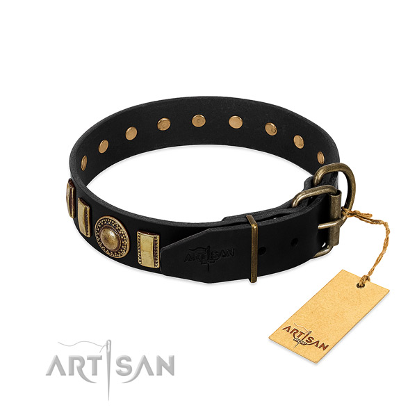 Durable leather dog collar with studs