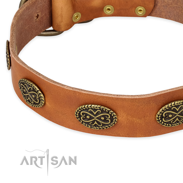 Extraordinary leather collar for your stylish canine