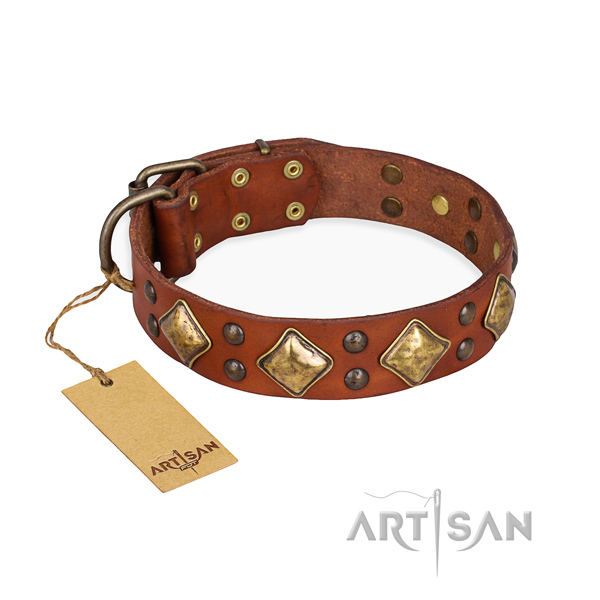 Easy wearing remarkable dog collar with reliable buckle
