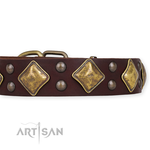 Genuine leather dog collar with designer rust resistant adornments
