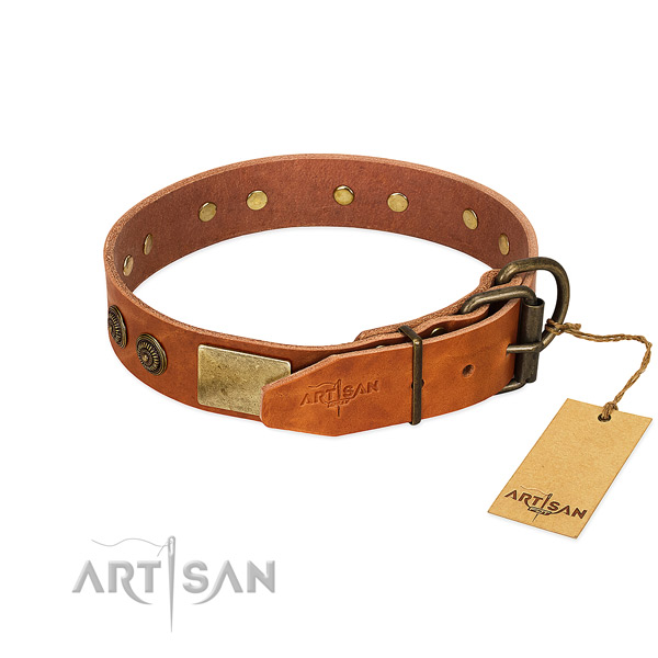Corrosion resistant traditional buckle on full grain natural leather collar for stylish walking your dog