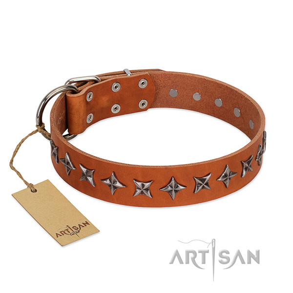 Handy use dog collar of finest quality genuine leather with decorations