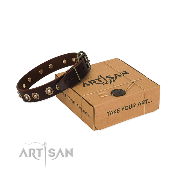Rust resistant traditional buckle on full grain leather dog collar for your dog