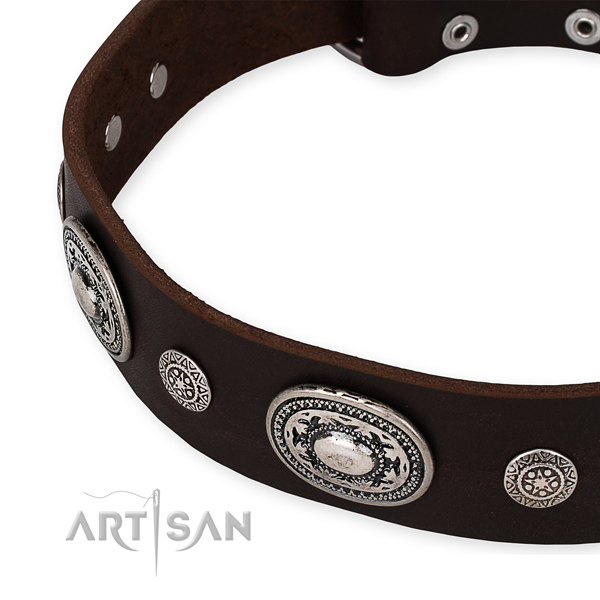 High quality genuine leather dog collar created for your beautiful dog