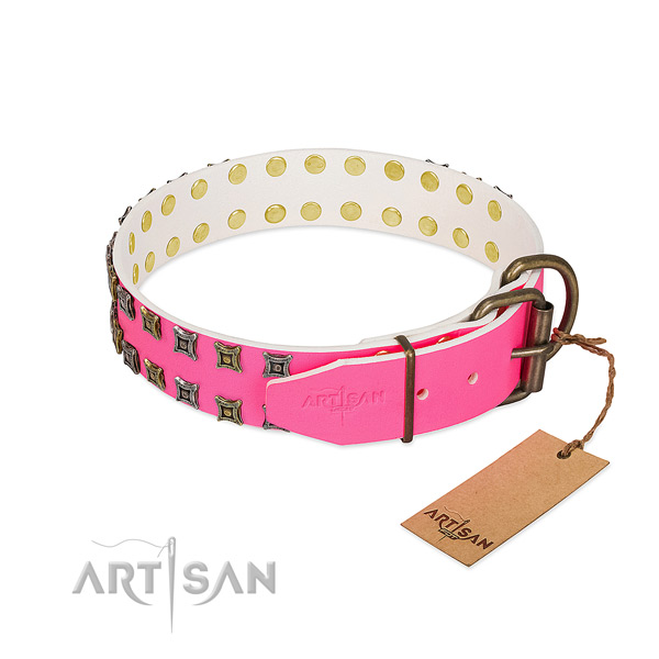 Genuine leather collar with fashionable adornments for your dog