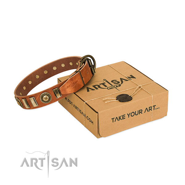 Soft natural leather dog collar with corrosion resistant traditional buckle