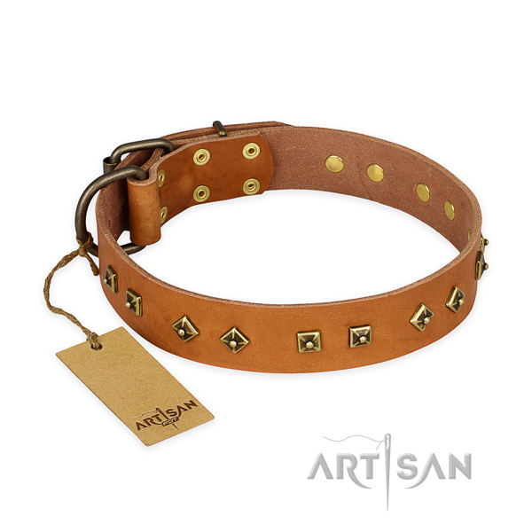 Convenient natural leather dog collar with durable hardware