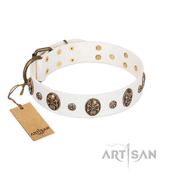 Exquisite genuine leather collar for your doggie