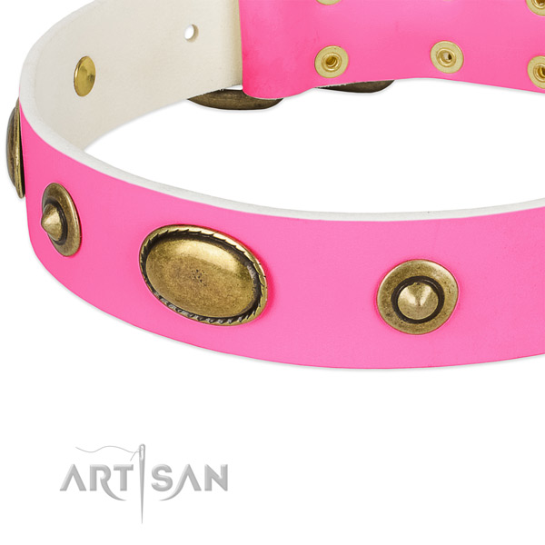 Corrosion proof studs on full grain leather dog collar for your pet