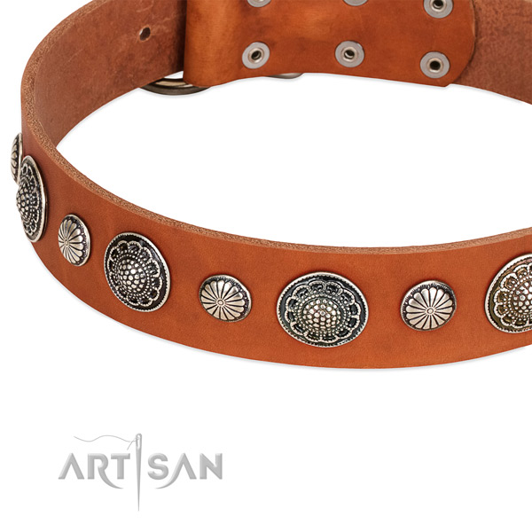 Full grain leather collar with corrosion resistant fittings for your lovely canine