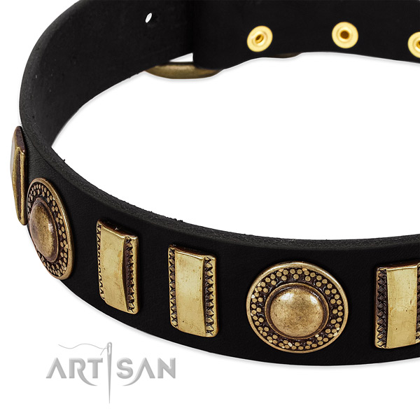 Top notch leather dog collar with corrosion resistant traditional buckle