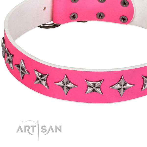 Daily walking embellished dog collar of reliable leather