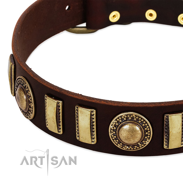 Quality full grain natural leather dog collar with durable hardware