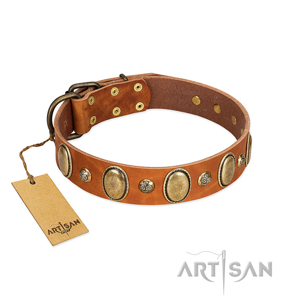 Full grain natural leather dog collar of soft material with fashionable adornments