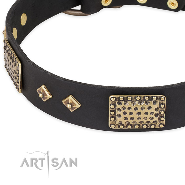 Reliable embellishments on full grain natural leather dog collar for your canine