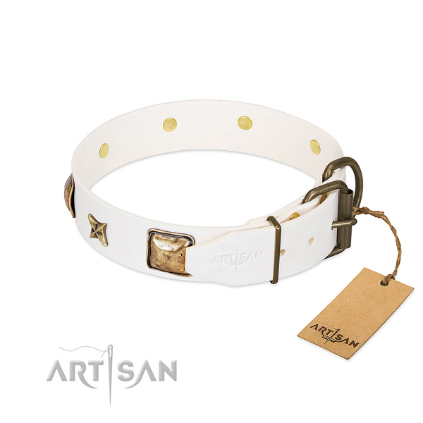 Genuine leather dog collar with durable buckle and studs