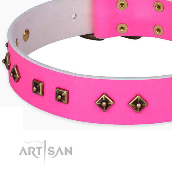 Decorated full grain leather collar for your lovely pet