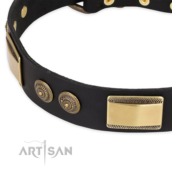 Unique leather collar for your handsome canine