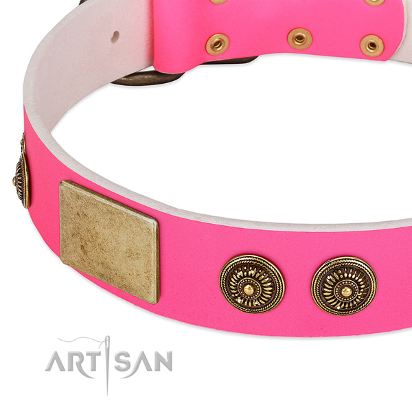Designer dog collar made for your attractive doggie