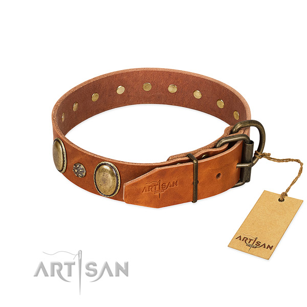 Fancy walking soft to touch full grain natural leather dog collar