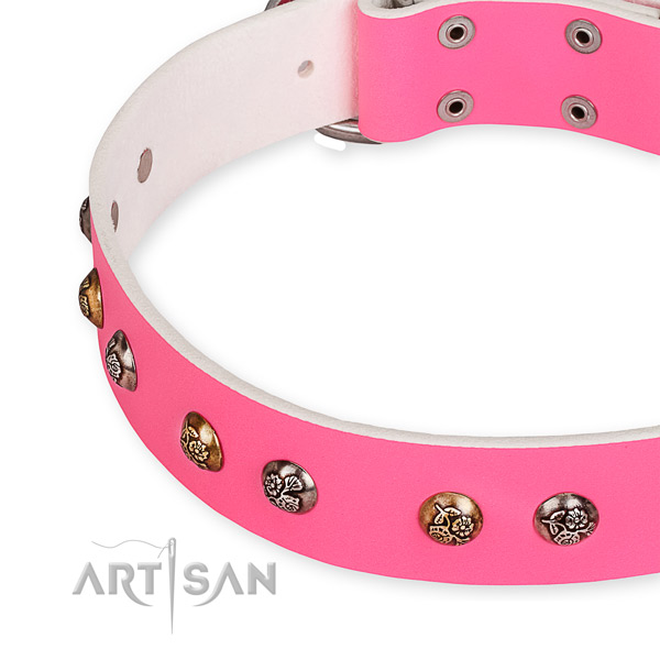 Genuine leather dog collar with significant strong embellishments