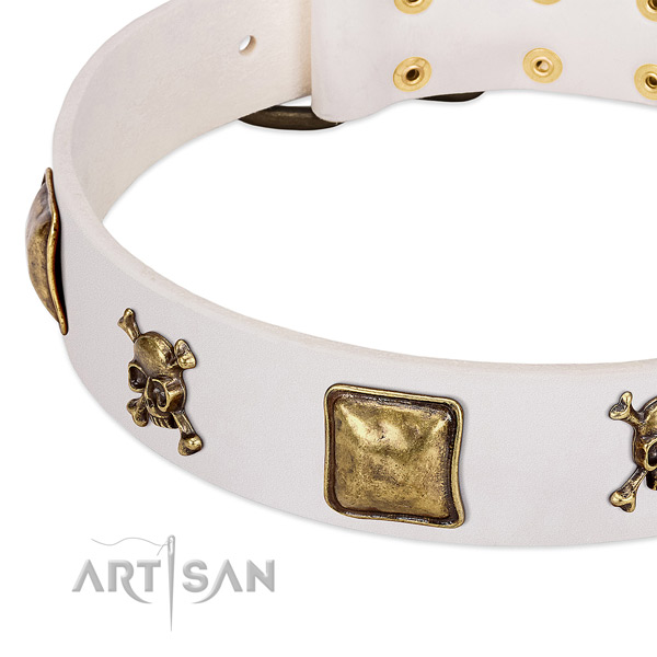 Amazing leather dog collar with corrosion proof studs