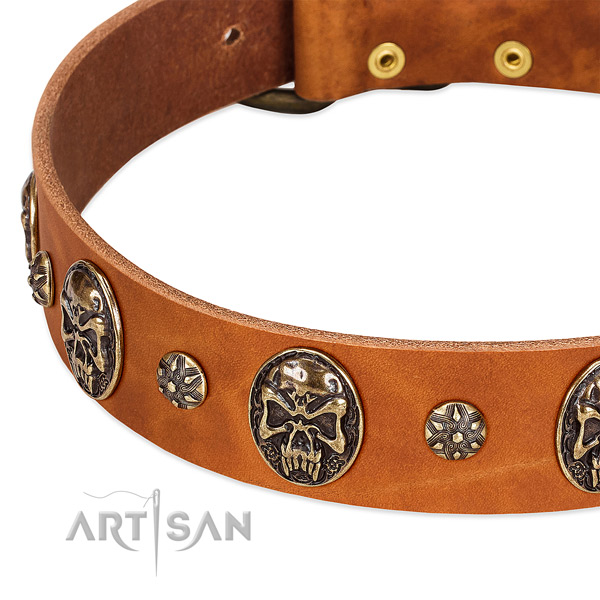 Durable studs on natural genuine leather dog collar for your pet
