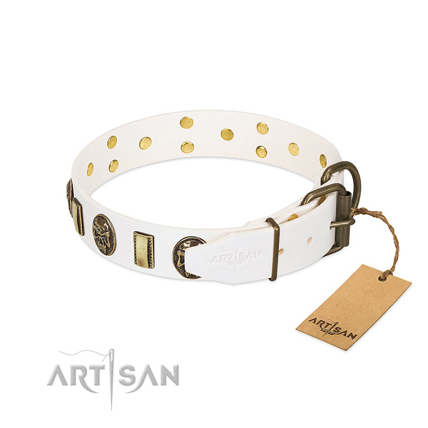 Strong hardware on full grain leather collar for everyday walking your pet