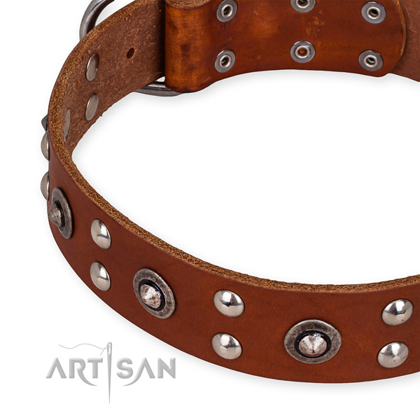 Full grain natural leather collar with durable fittings for your handsome doggie
