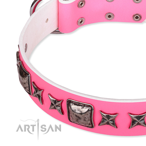 Everyday use embellished dog collar of high quality full grain leather