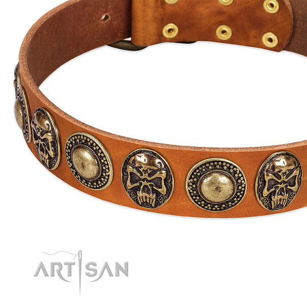 Corrosion resistant decorations on full grain natural leather dog collar for your pet