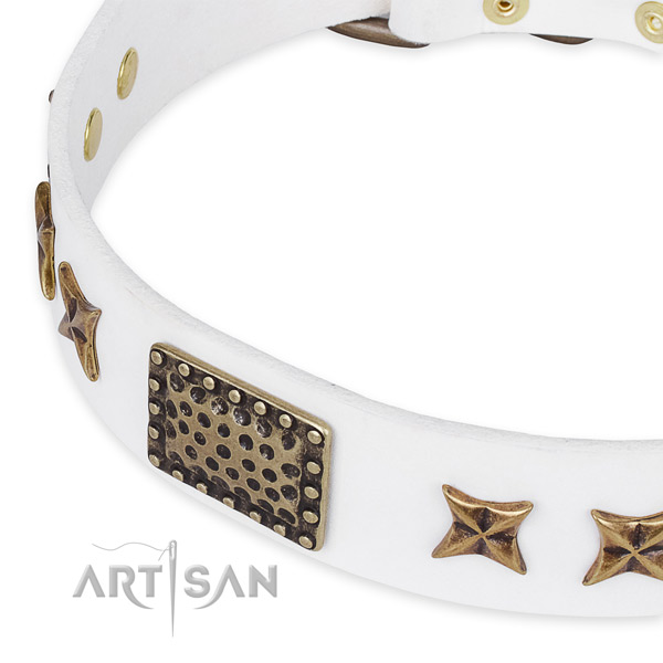 Natural genuine leather collar with durable hardware for your beautiful pet