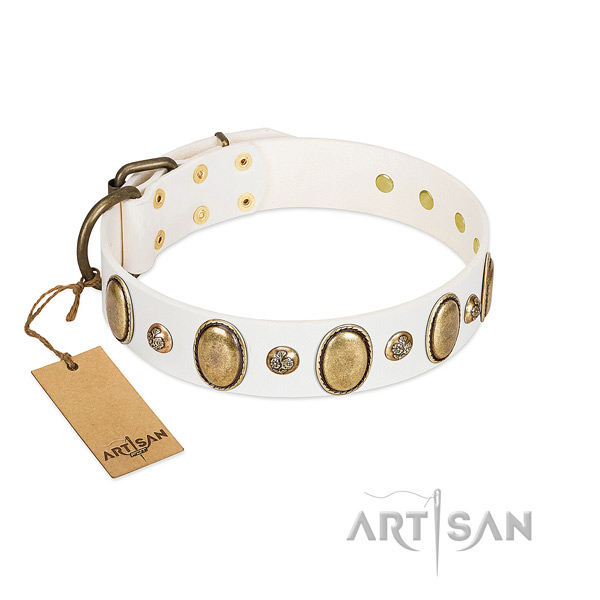 Leather dog collar of quality material with trendy studs