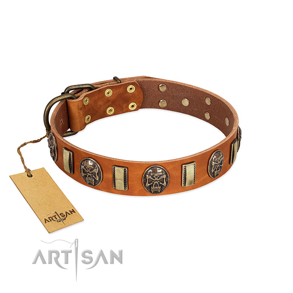 Inimitable full grain natural leather dog collar for daily walking