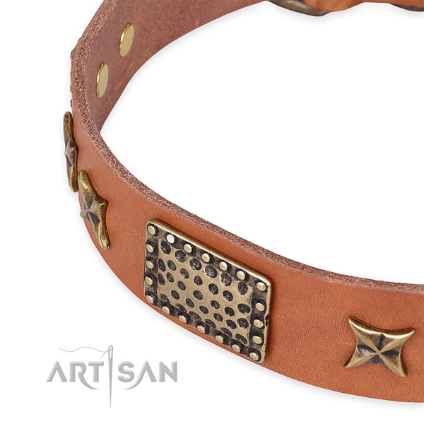 Leather collar with strong traditional buckle for your beautiful canine