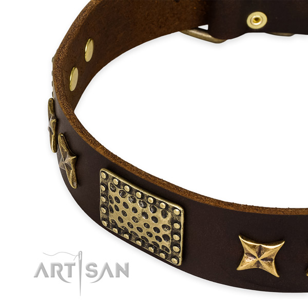Full grain leather collar with rust-proof fittings for your handsome doggie