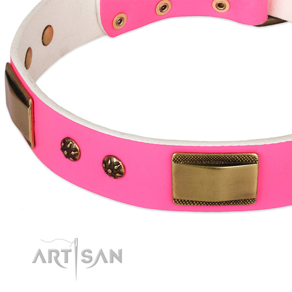 Corrosion resistant embellishments on leather dog collar for your doggie