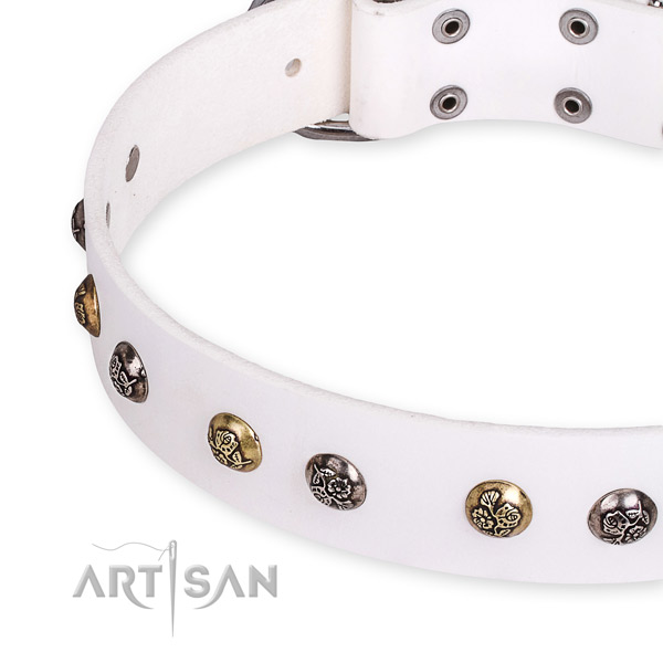 Full grain natural leather dog collar with stylish durable adornments