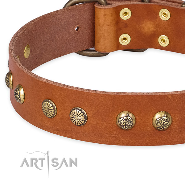 Full grain leather collar with rust resistant buckle for your lovely four-legged friend