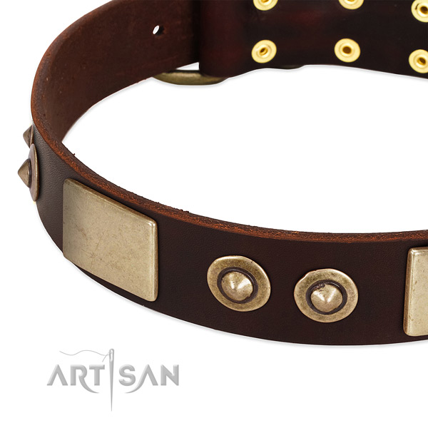 Durable adornments on full grain leather dog collar for your pet