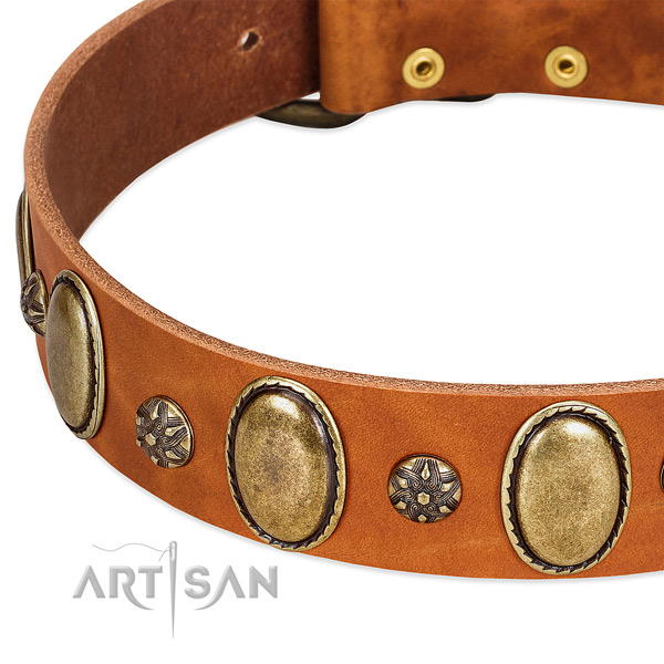 Easy wearing high quality full grain leather dog collar