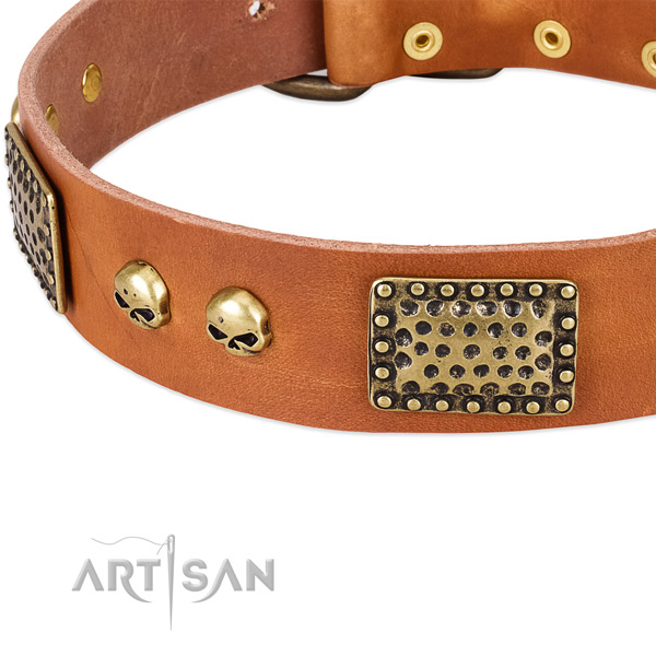 Durable decorations on leather dog collar for your doggie