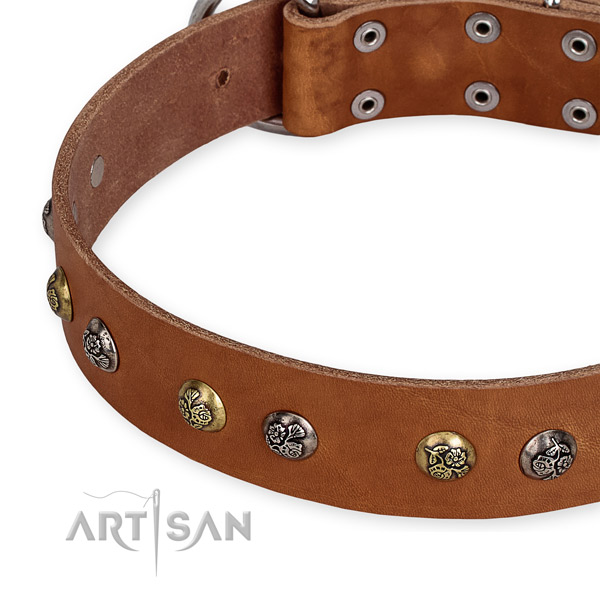 Full grain genuine leather dog collar with remarkable rust resistant adornments
