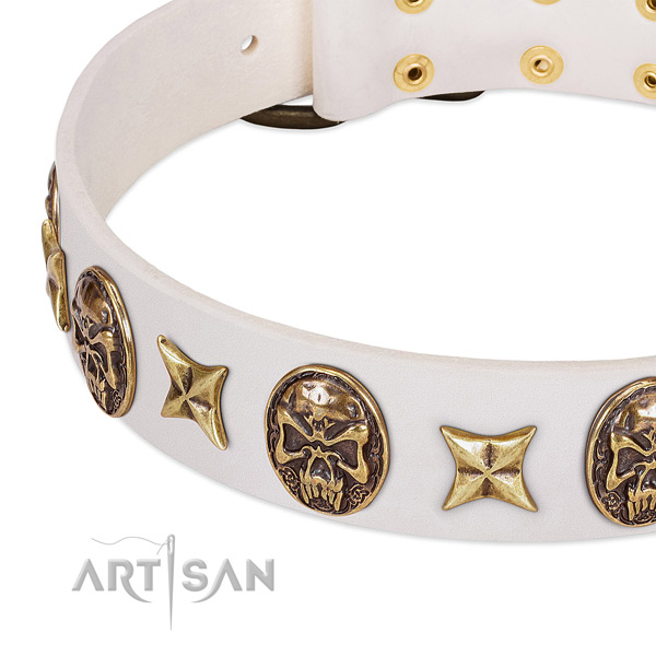 Designer dog collar made for your stylish canine